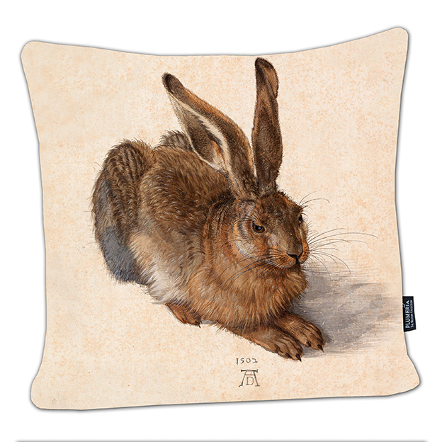 Cushion, Duerer, A Young Hare