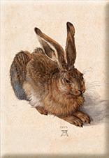 Magnet, Duerer, A Young Hare, 80x55mm